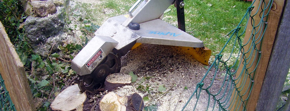 small stump grinder in back garden